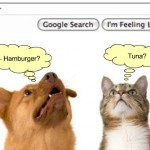 cat-dog-segmentation