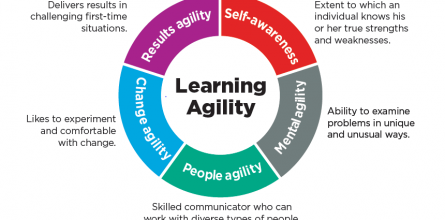 LearningAgilityGraphic