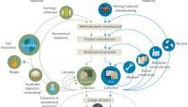 nclimate-nature-cicrular-economy