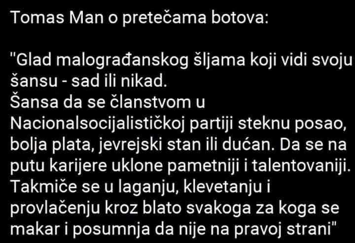 tomas man - botovi